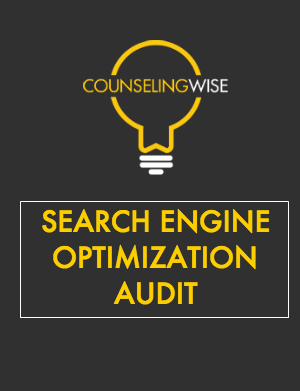 SEO AUDIT PICTURE